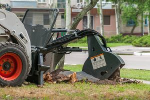 Local contractors removing an unwanted tree stump in an Indianapolis neighborhood