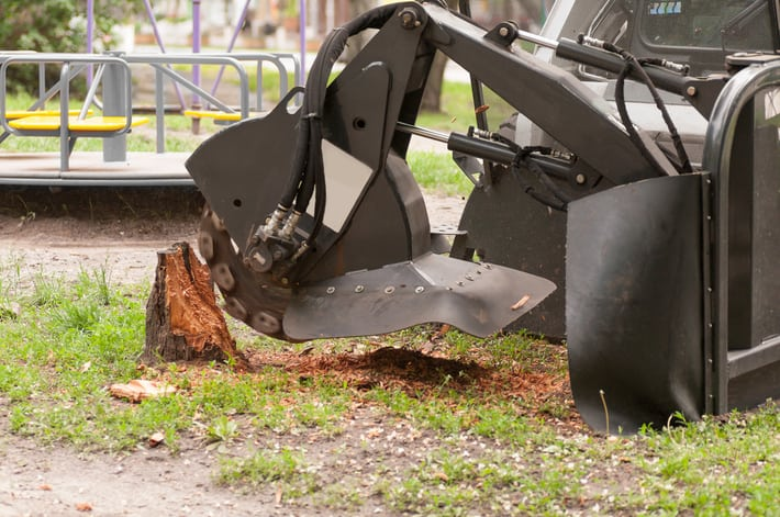 Professional Tree Stump Grinding Machine removing a stump from an Indianapolis playground