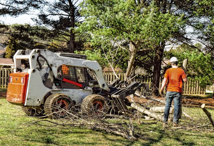 Hauling away trees after being removed from the front lawn of an Indianapolis home