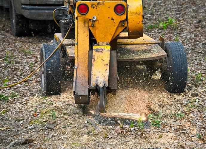 Fishers, Indiana stump grinders